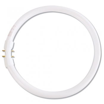 Fluorescent Bulb For Circus Lamp